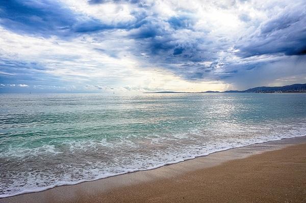 ボランティアで美しい海を