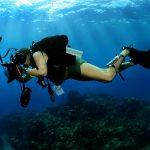 水中カメラマン