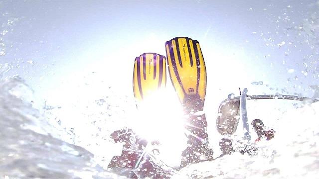 ダイビング用フィン
